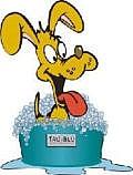 Scrubs Dog Wash